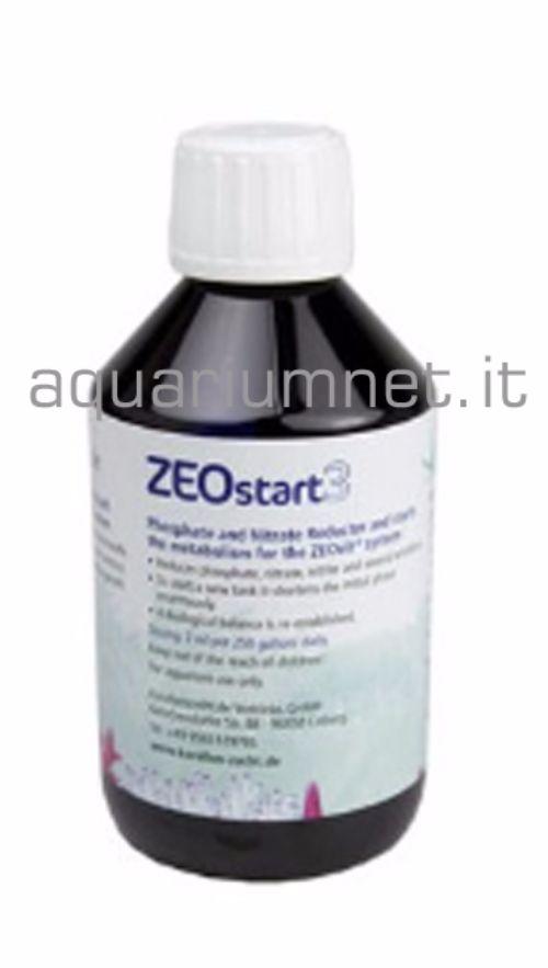-Korallen-Zucht-Zeostart-3