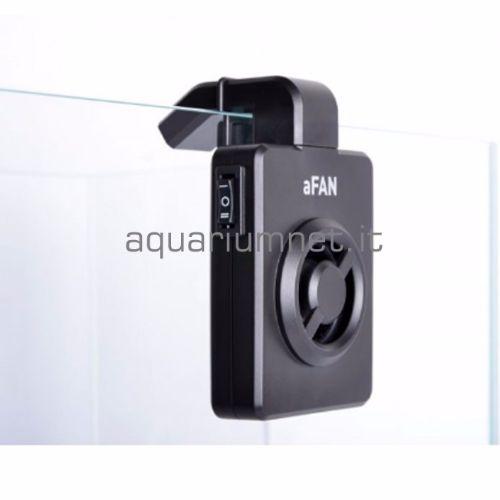 a-FAN