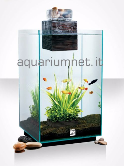 Acquario--Askoll-Fluval-CHI-25L