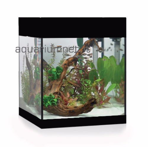 Acquario-Askoll--Pure-M