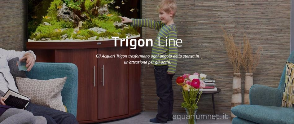 Acquario-Juwel-Trigon-190-con-Supporto