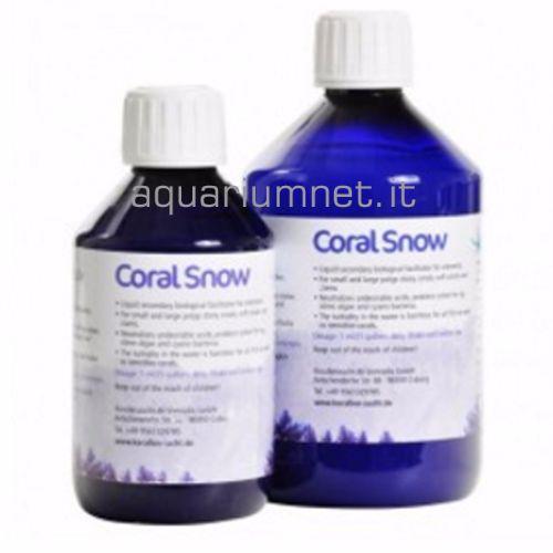 Korallen-Zucht-Coral-Snow-